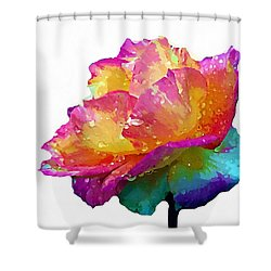 Shower Curtain featuring the photograph Tri Color Rose by Joseph Frank Baraba