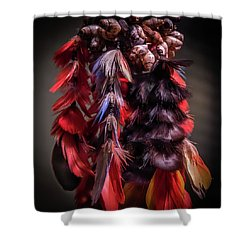 Tribal Art Shower Curtain