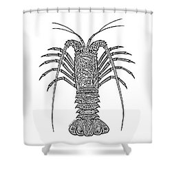 Tribal Spiny Lobster Shower Curtain