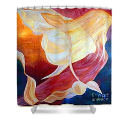 Tribute To An Angel Shower Curtain by Claire Bull