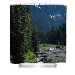 Trickling Shower Curtain