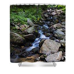 Trickling Mountain Brook Shower Curtain