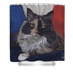 Tricolore Shower Curtain
