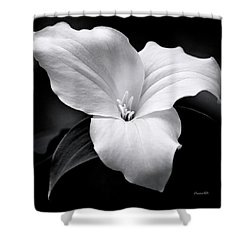 Shower Curtain featuring the photograph Trillium Black And White by Christina Rollo