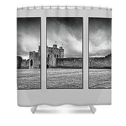 Trim Castle Triptych  Shower Curtain by Martina Fagan