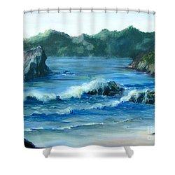 Trinidad Beach Shower Curtain