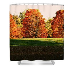 Trinity Trees Shower Curtain