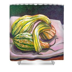 Shower Curtain featuring the painting Gourd Grouping by Laura Aceto