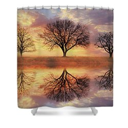 Shower Curtain featuring the mixed media Trio Of Trees by Lori Deiter