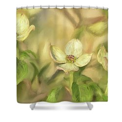 Shower Curtain featuring the digital art Triple Dogwood Blossoms In Evening Light by Lois Bryan