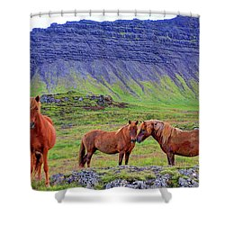 Shower Curtain featuring the photograph Triple Horses by Scott Mahon