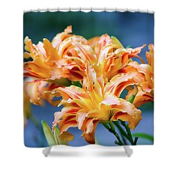 Triple Lilies Shower Curtain