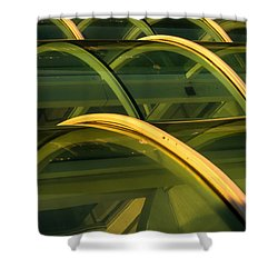 Triple Skylight Shower Curtain