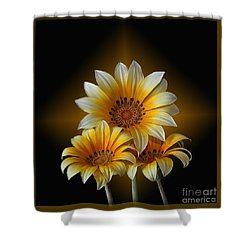 Triple Sunshine Black And Gold Shower Curtain by Shirley Mangini