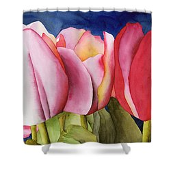 Triple Tulips Shower Curtain