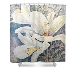 Shower Curtain featuring the painting Triplefold White by Carolyn Rosenberger