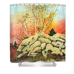 Triptych Panel 2 Shower Curtain