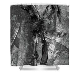 Trojan Horse - Black And White Vertical Painting Shower Curtain