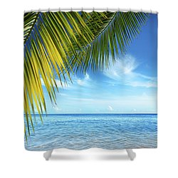 Tropical Beach Shower Curtain by Carlos Caetano