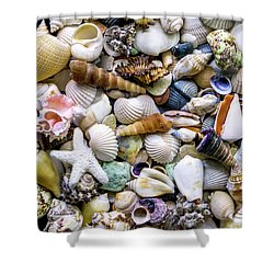 Tropical Beach Seashell Treasures 1500a Shower Curtain