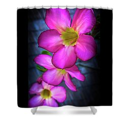 Tropical Bliss Shower Curtain by Karen Wiles