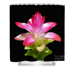 Tropical Bliss Shower Curtain