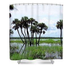 Tropical Flooding Shower Curtain by Rosalie Scanlon
