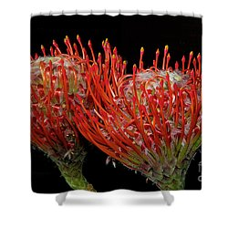 Tropical Flower Shower Curtain by Elvira Ladocki