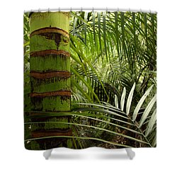 Tropical Forest Jungle Shower Curtain by Les Cunliffe