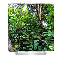 Shower Curtain featuring the photograph Tropical Garden by Francesca Mackenney