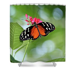 Tropical Hecale Butterfly Shower Curtain by Karen Adams