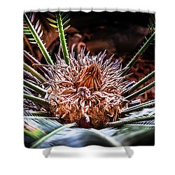 Shower Curtain featuring the photograph Tropical Moments by Karen Wiles