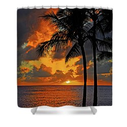 Tropical Nights  Shower Curtain by Lynn Bauer