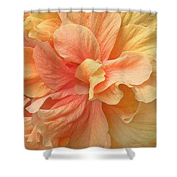 Tropical Peach Hibiscus Flower Shower Curtain by Deborah Smith