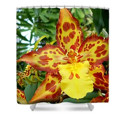Tropical Red And Yellow Orchids Shower Curtain