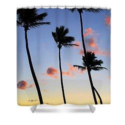 Tropical Sunrise Shower Curtain by Elena Elisseeva