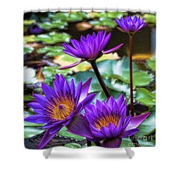 Tropical Water Lilies Shower Curtain