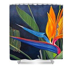 Tropicoso Shower Curtain