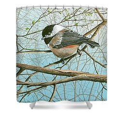 Troublesome Trio Shower Curtain