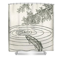 Trout Rising To Dry Fly Shower Curtain