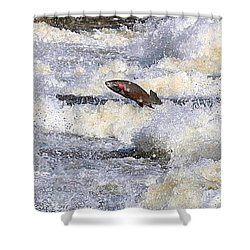 Shower Curtain featuring the digital art Trout by Robert Pearson