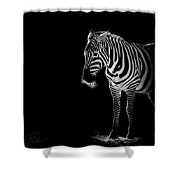 Troy Shower Curtain