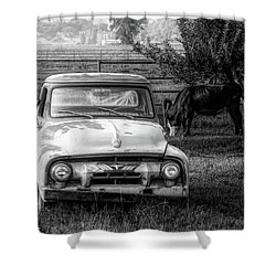 Truck And Cows Living Together Bw Shower Curtain
