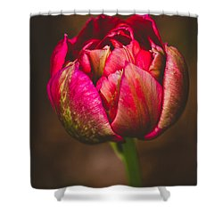 Shower Curtain featuring the photograph True Colors by Yvette Van Teeffelen