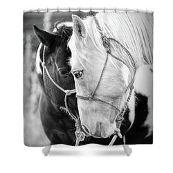 Shower Curtain featuring the photograph True Friends by Sharon Jones