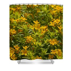 True Gold Shower Curtain by Tim Good