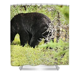 True Nature Shower Curtain