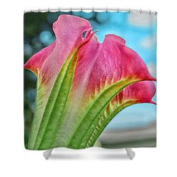 Trumpet Shower Curtain