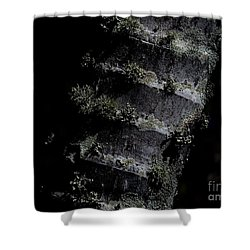 Trunk Moss Shower Curtain