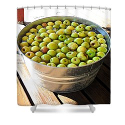 Tub Of Fuji Apples Shower Curtain
